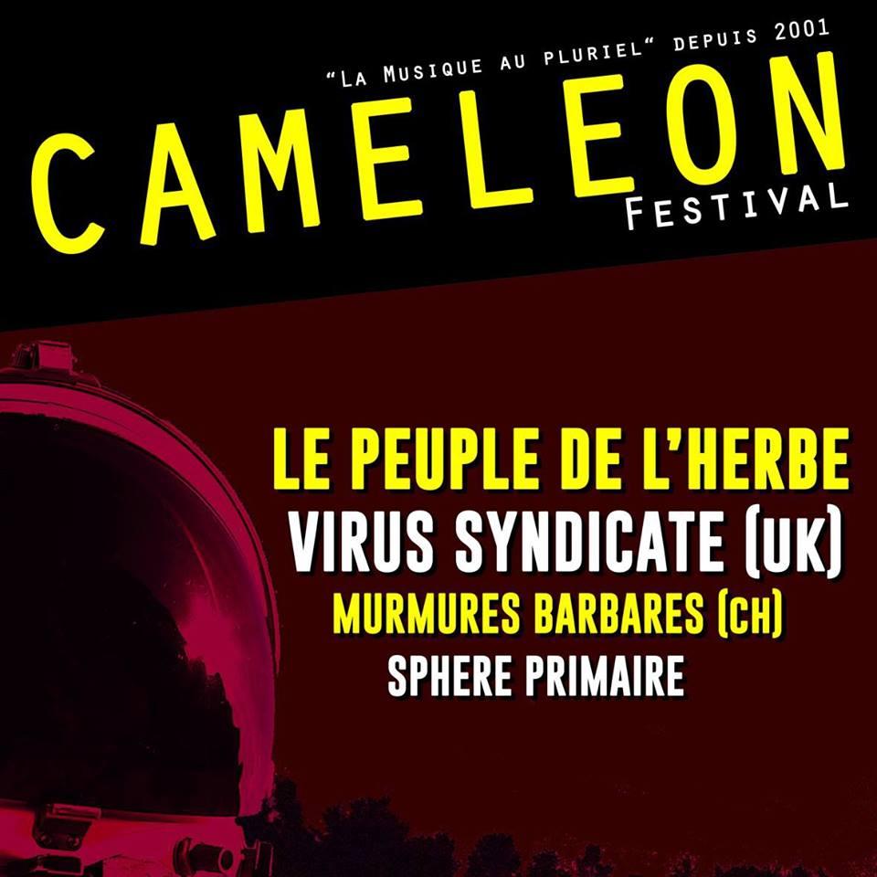 Festival Cameleon - 28 mars 2015